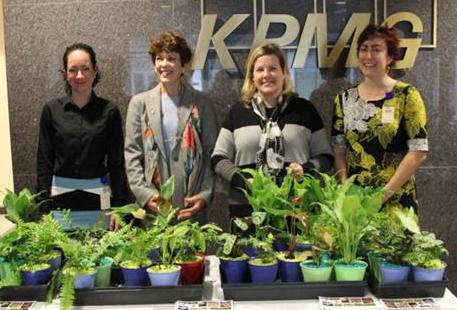 KPMG plant project